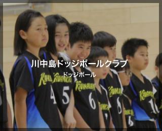 ドッジボール「川中島ドッジボールクラブ」様(神奈川県)