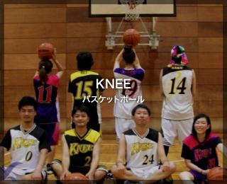 バスケットボール「KNEE 様」