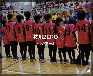ドッジボール「桜川ZERO 様」(茨城県)